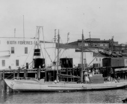 Booth Fisheries Company