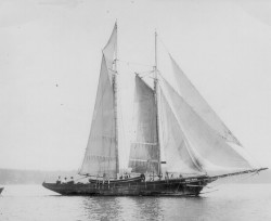 Sloop Jennie F. Decker in 1901 with dories stowed amidships